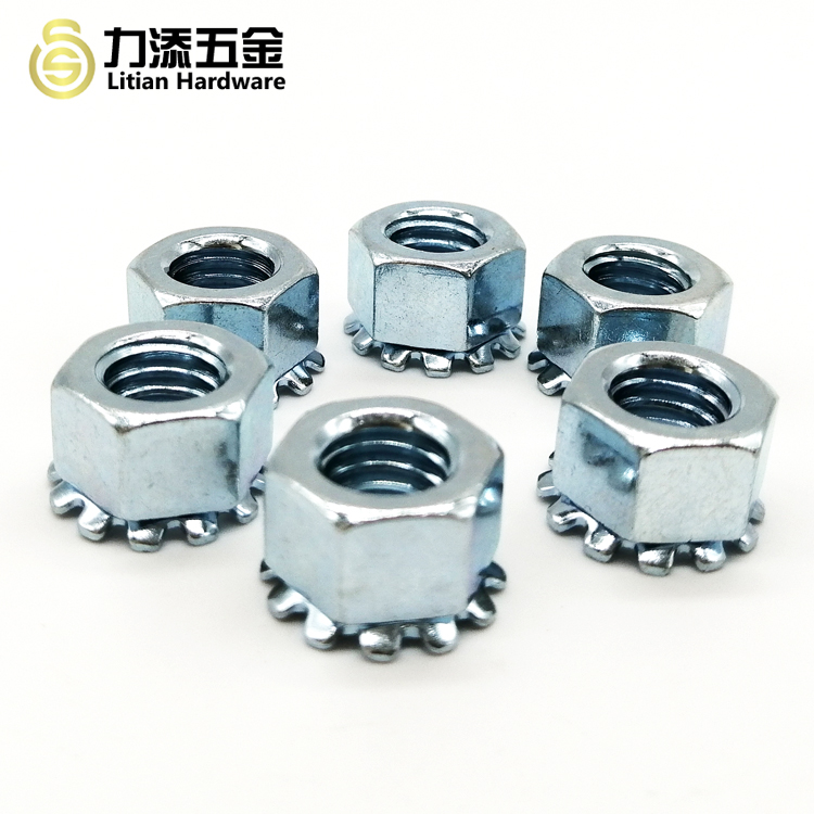 Stainless Steel High Quality Nuts Custom Size Screw
