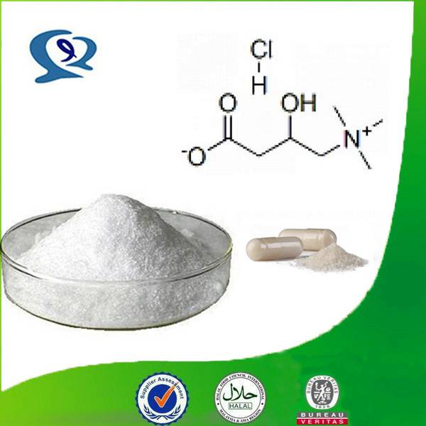 l-carnitine powder, l carnitine powder, acetyl l carnitine