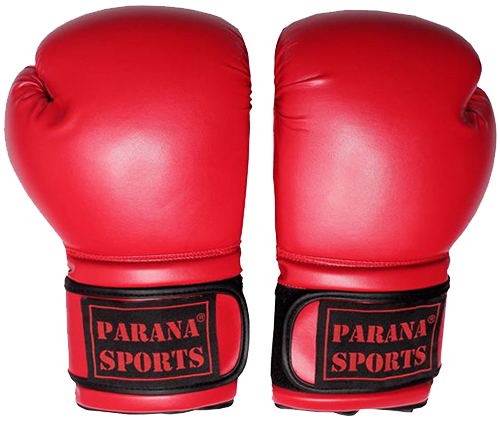 Parana Sports Boxing Gloves with Special Offer