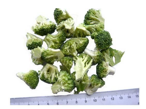 Freeze Dried Broccoli Floret