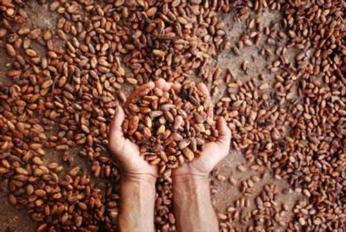 Coffee arabic