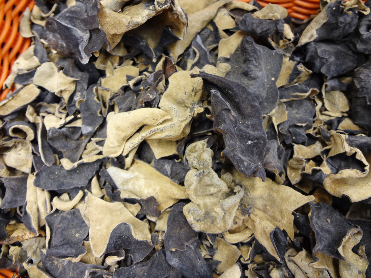 Mush Room Wood Ear,Dried Black Fungus Mush Room,Claud Mush Room,shita mush room