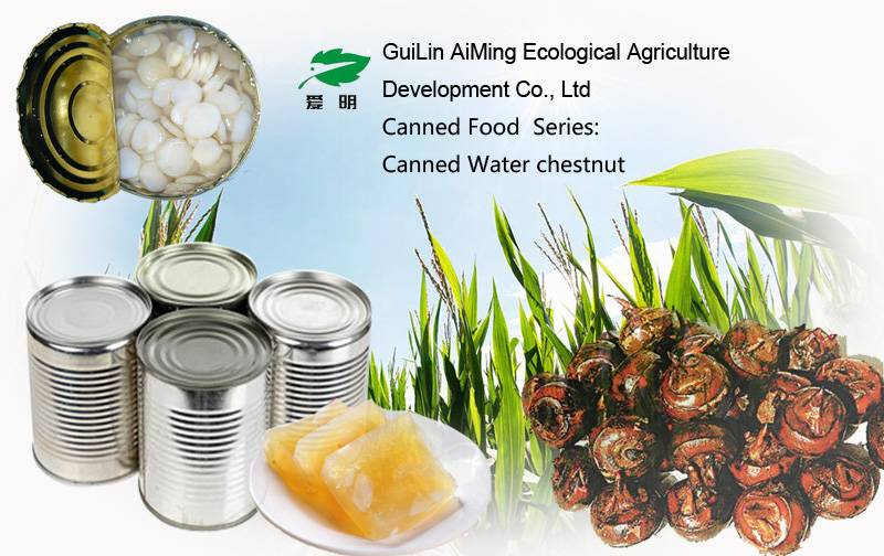 Canned water chestnut slices manufacture supply