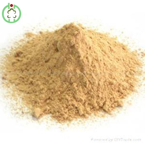 Lysine feed additives high protein low price