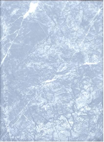 Tengling PVC flooring-Stone Series