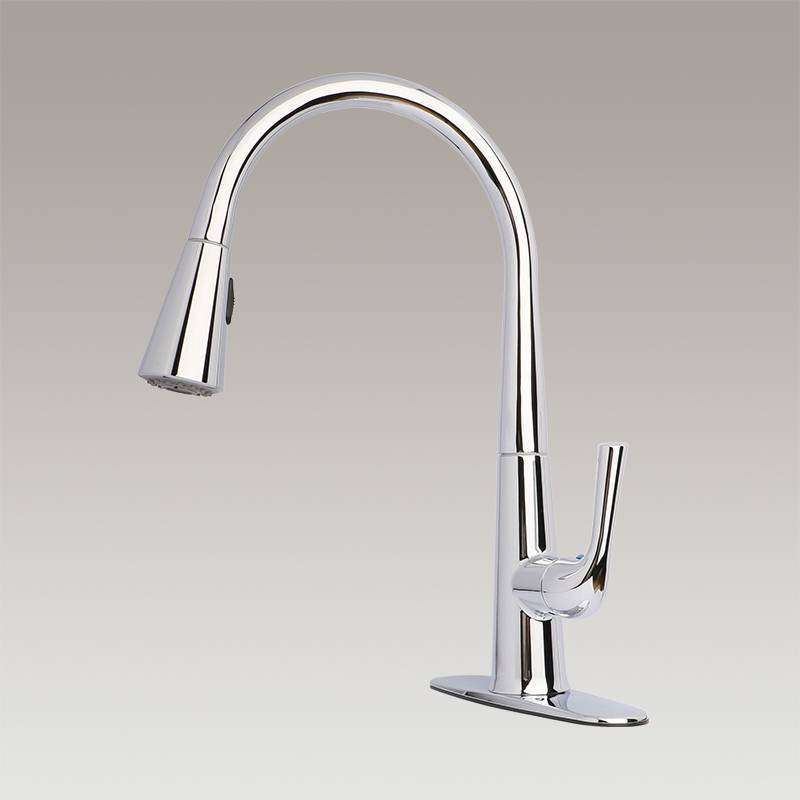 Single handle kitchen faucet with pull-down Spout