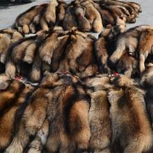 raccoon fur pelt wholesale