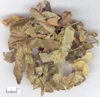 icariin-- Epimedium leaf extract 10-98% HPLC
