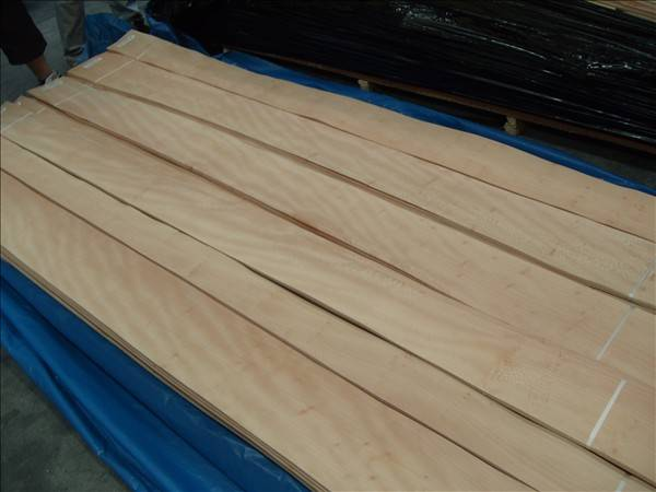 Promotion Offer For Lacewood Veneer