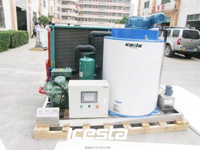 ICESTA Insutry best selling 5T/D Flake Ice Machine