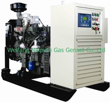 20kW natural gas genset