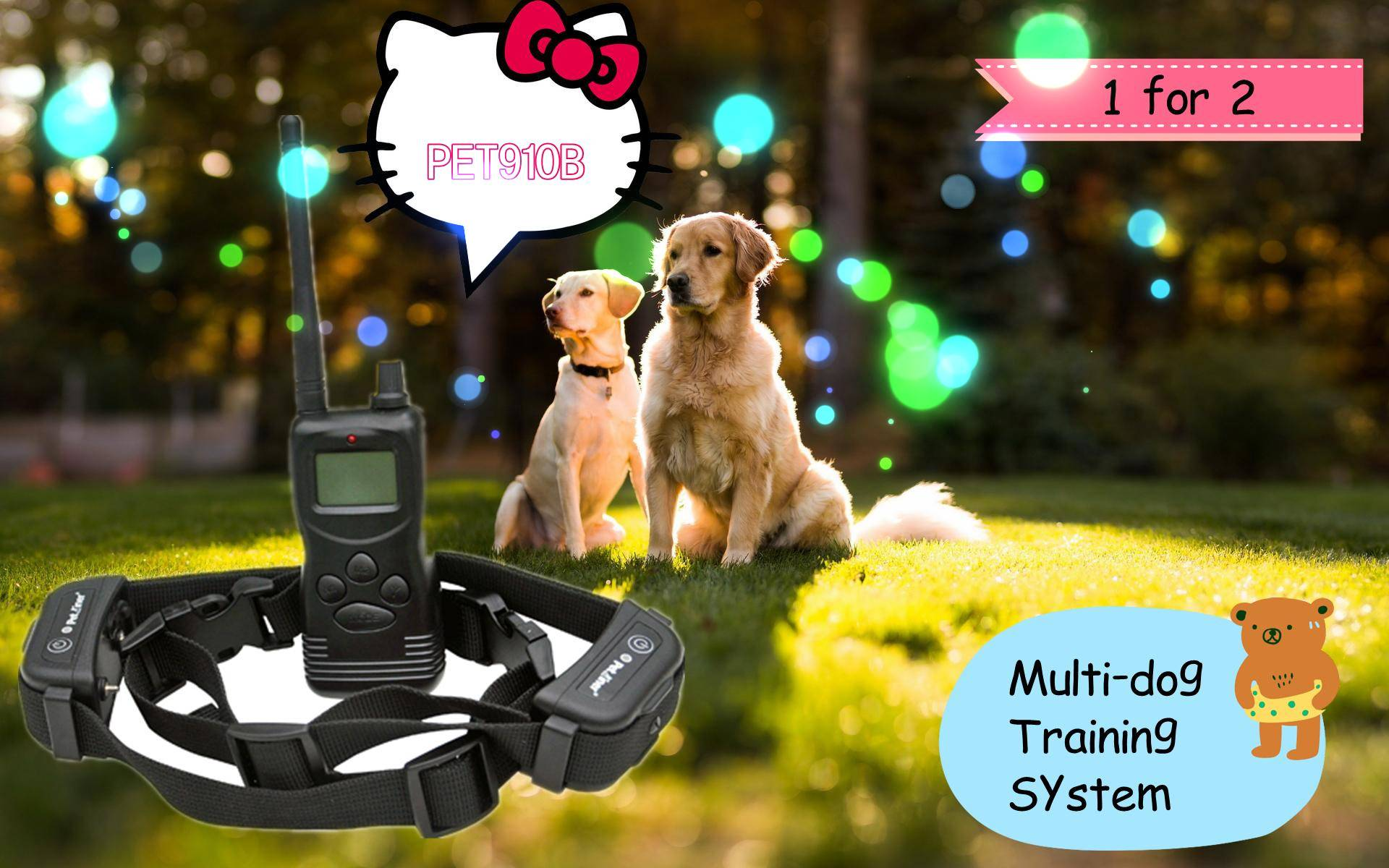 99LV, 1000M Remote Electric Dog Collar