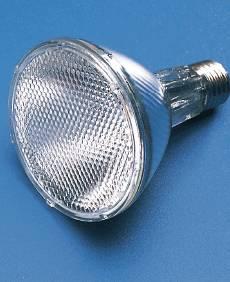 Ceramic Metal Halide Lamp