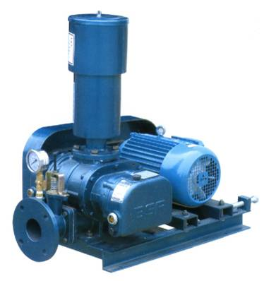 vaccuum pumps for sewage treatment
