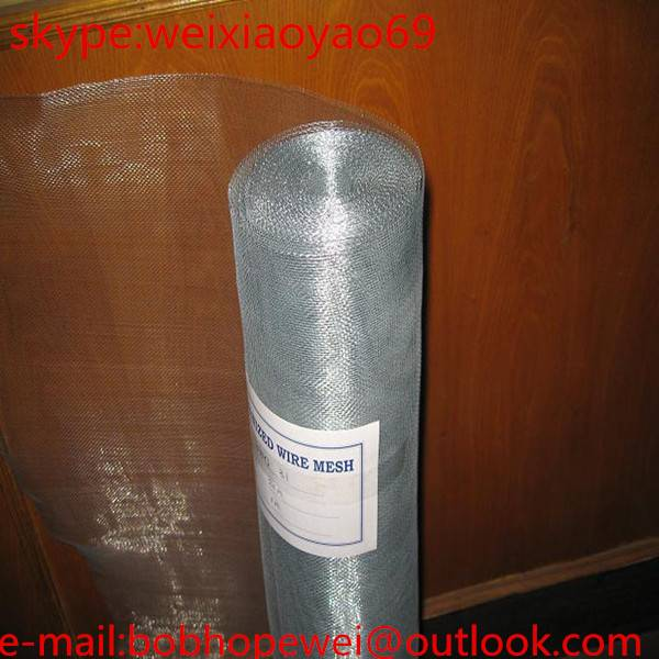 1010,1414, 1616, 1818 electro galvanized window screen / window netting