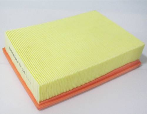 13721738462 Auto Parts Air Filter for BMW