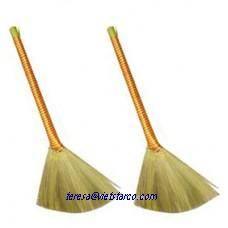 Vietnam Grass broom