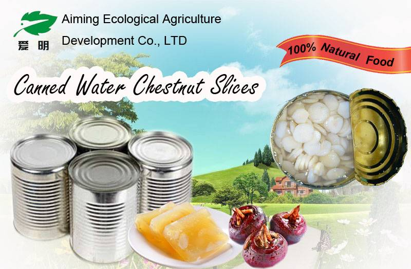 2015 new season Canned water chestnut slices