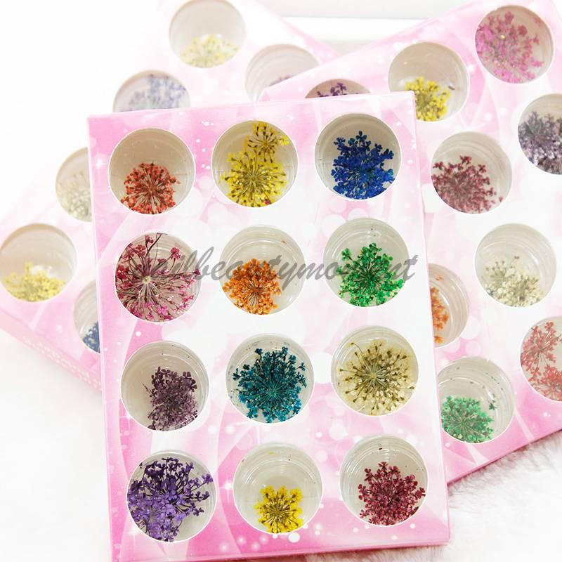 Art Nail 3D Dried Flowers Decoration Manicure Kit (D54)