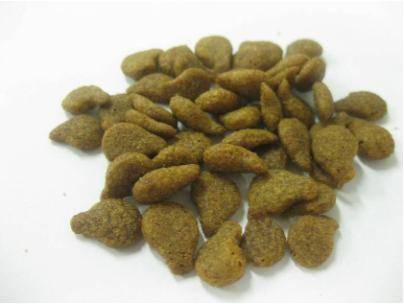Sell dry dog food ,cat food ,canned petfood thailand