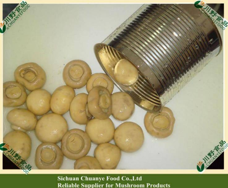 Canned Champignon in tins, 400g