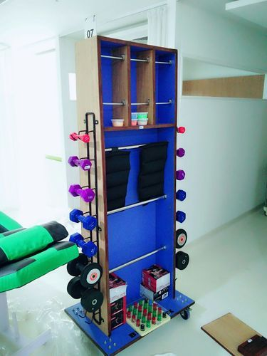 Biotronix Upper Extremity Exercise Station for Physiotherapy