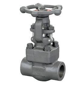 Female threaded and socket welded gate valves