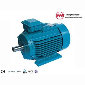 sell NEMA series High Efficiency Three Phase Induction Motor
