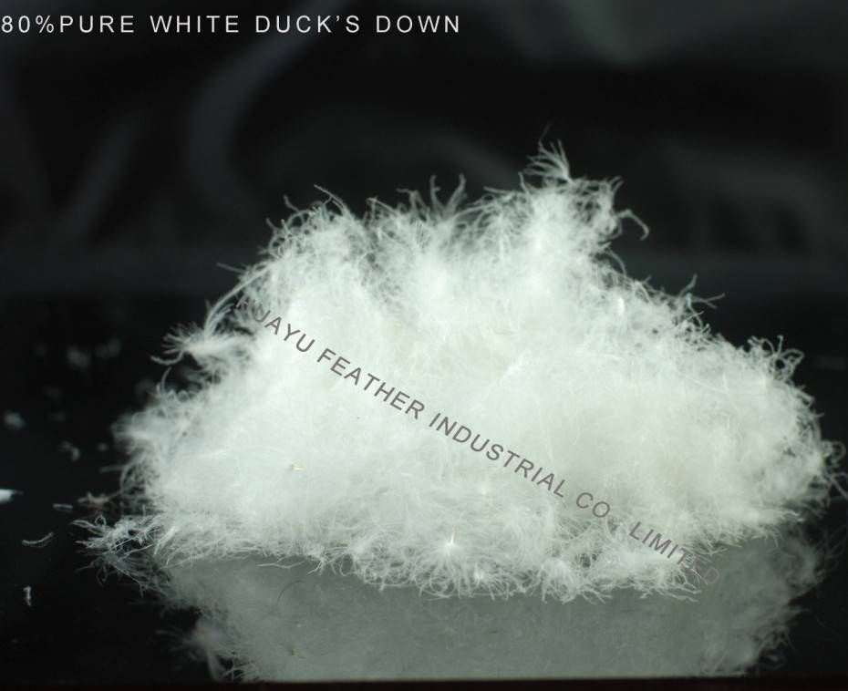 80% Pure White Duck's Down
