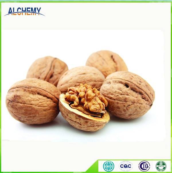 Sell Walnut