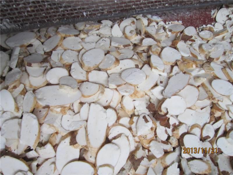 ISO standard cassava slicer machine