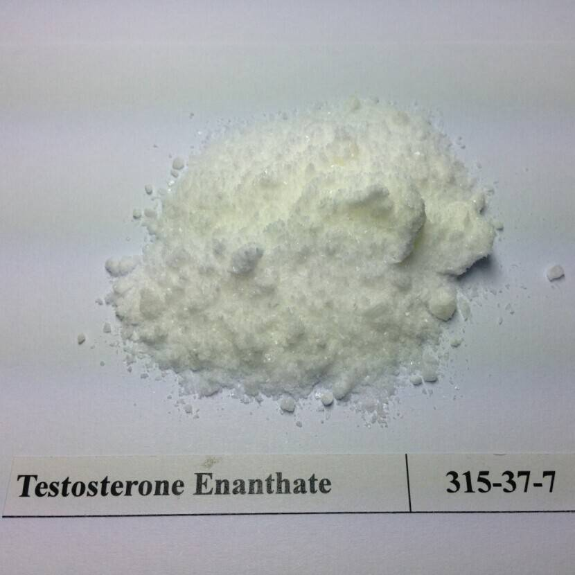 Test Enanthate Test E Test Enan TE 315-37-7