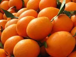 Fresh Valencia Oranges for sale
