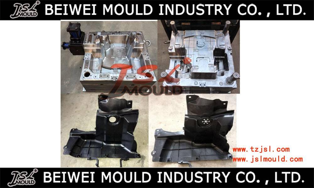 Injection plastic auto mudguard mould