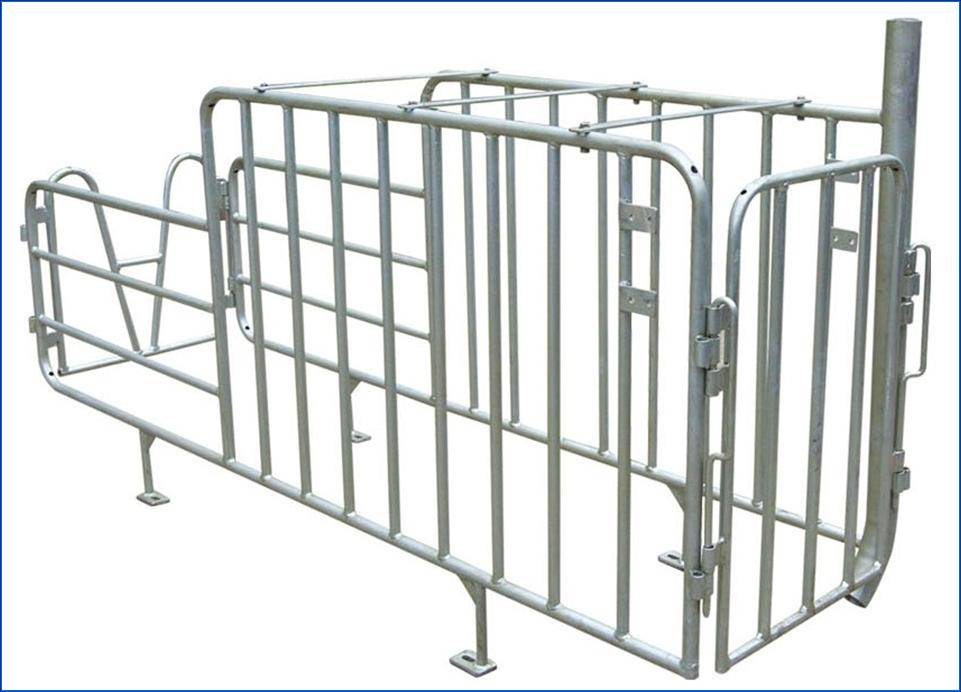 Gestation stall for pig with or without feed drop tube