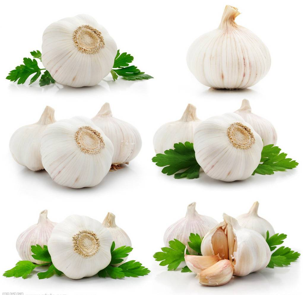 Allicin From Garlic
