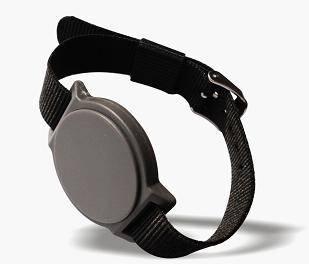 ACK-1111 UHF RFID Wrist Band Tag