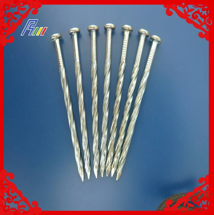 twist nail from china factory