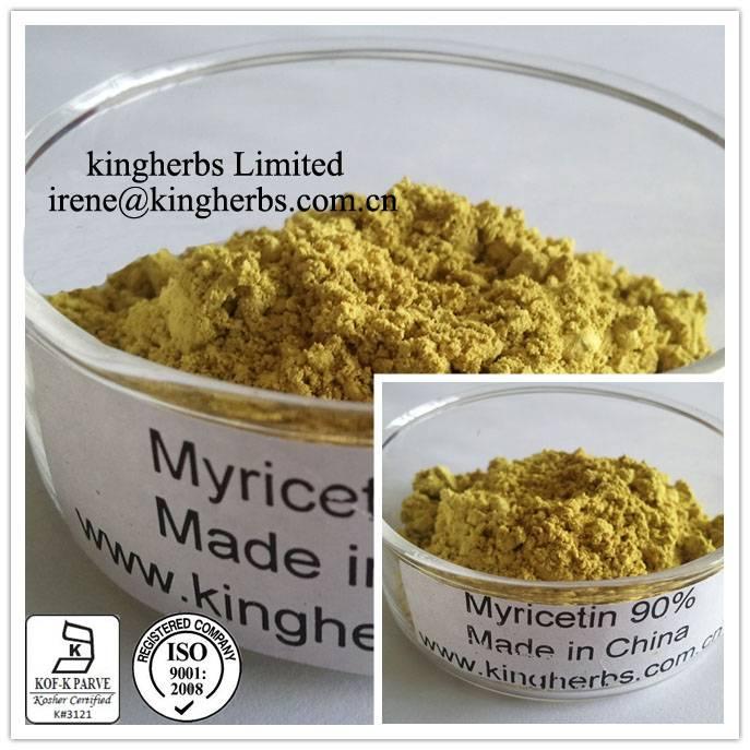 Kingherbs Offer Myricetin CAS: