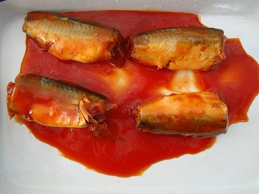 CANNED MACKERL IN TOMATO SAUCE
