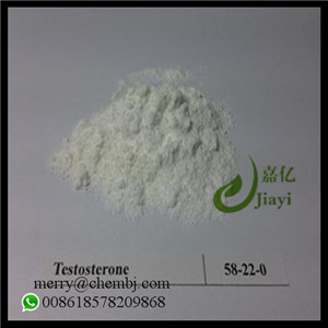 Effective Steroid Powder Testosterone Base for Bodybuilding