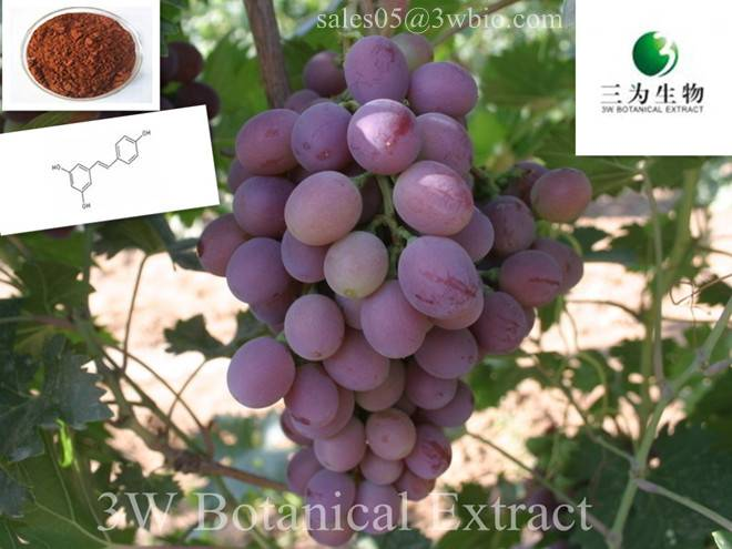Grape Skin Extract(sales05 AT 3wbio DOT com)