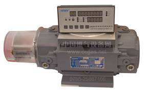 Gas flow meter - China gas equipment network