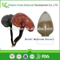 High Quality Reishi Mushroom Extract Polysaccharide 10-50%