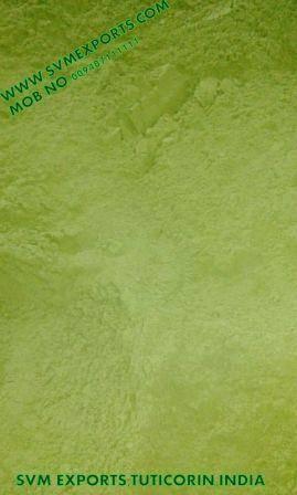 India Moringa Oleifera Leaf Powder