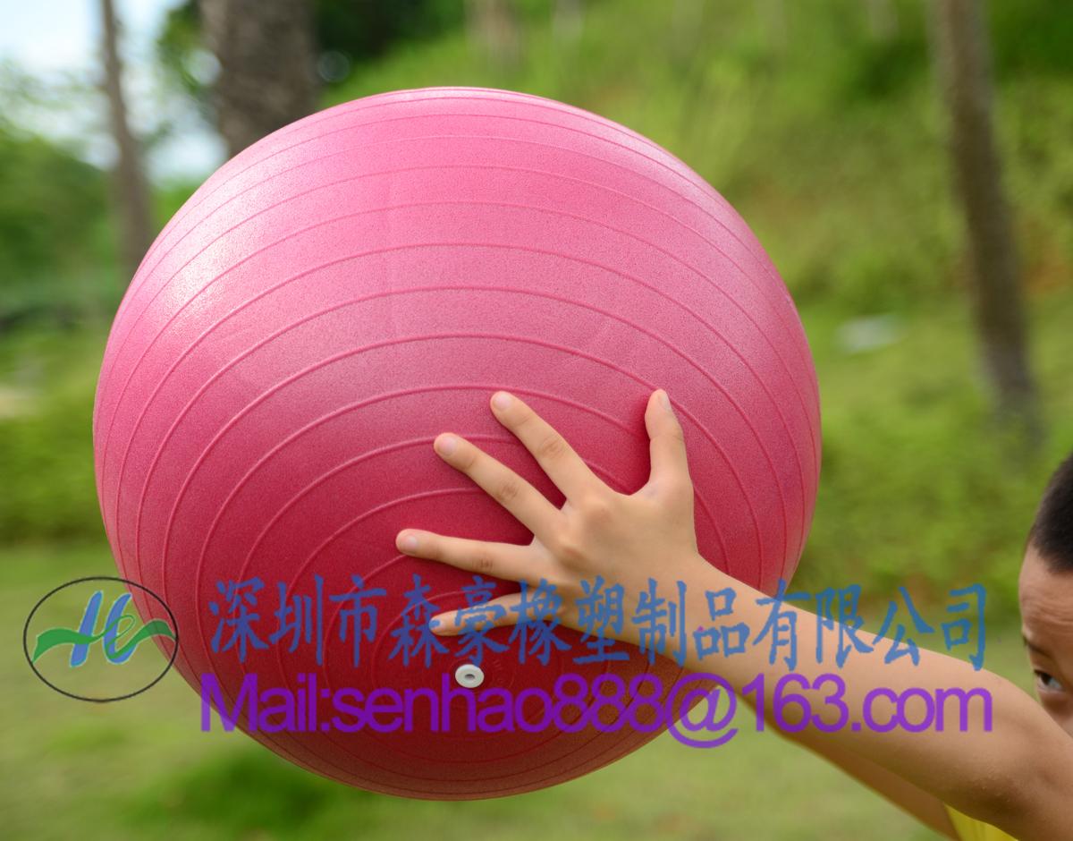 Gymnastic Ball Tai Chi Ball