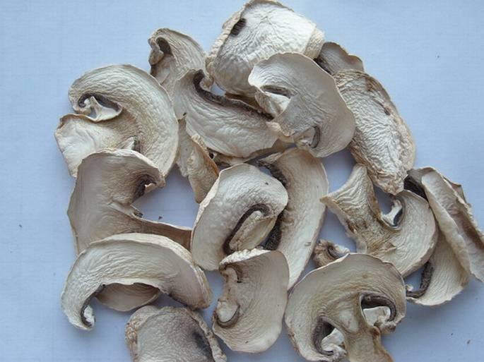 Hot Air Dried Mushroom