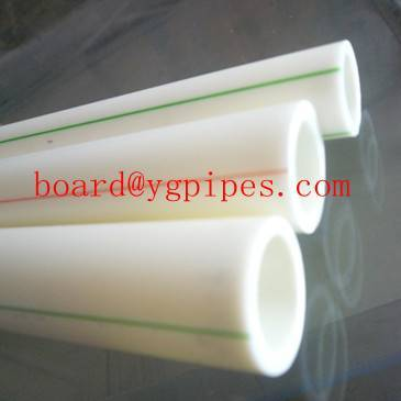 ppr pipe/ppr pipe for cold water/2011 high quality PPR Pipe