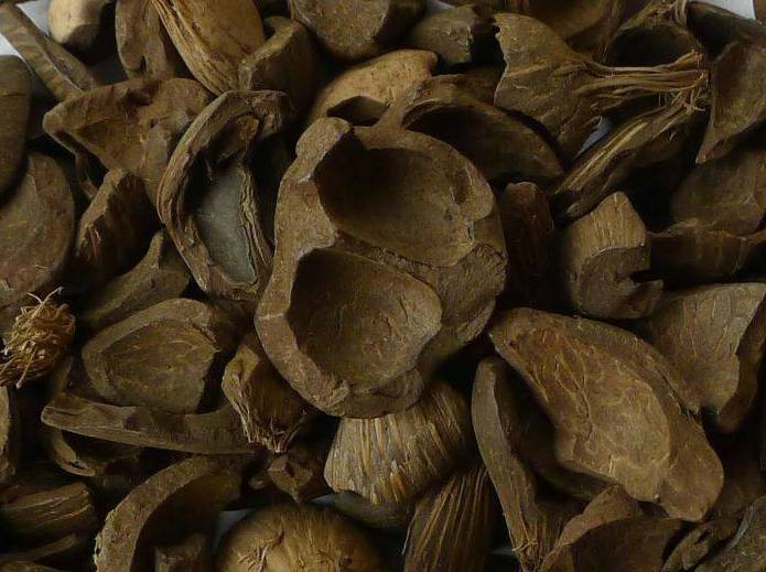 PALM KERNEL SHELL - INDONESIA
