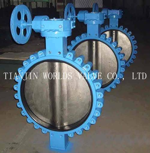 DN 600 API609 VITON/FKM LINING WAFER LUG CONCENTRIC BUTTERFLY VALVE